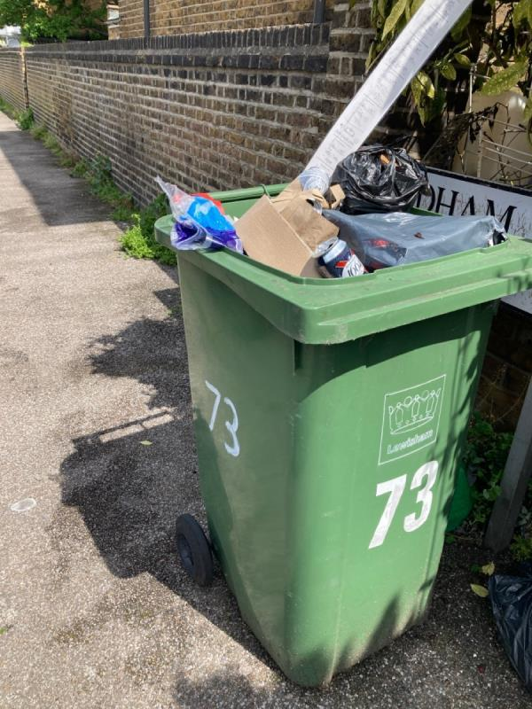 Green bin needs removing -57b Ringstead Road, London, SE6 2BU