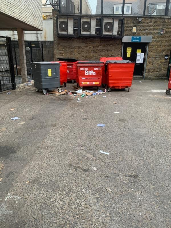 Rubbish lying on the road cannot walk and smells bins has t be removed.-9 RON LEIGHTON, East Ham, E6 1HZ