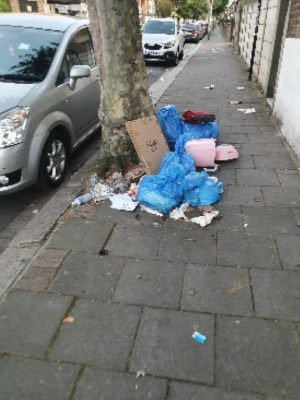 a lot of rubbish dumped at top of road-484 Romford Road, London, E7 8AP