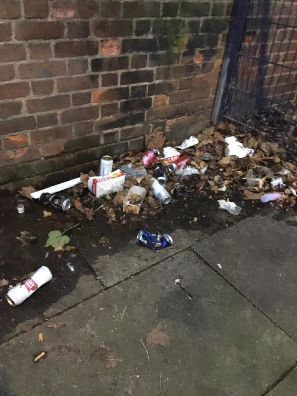 Pile of beer cans image 1-119b Earlham Grove, London, E7 9AP