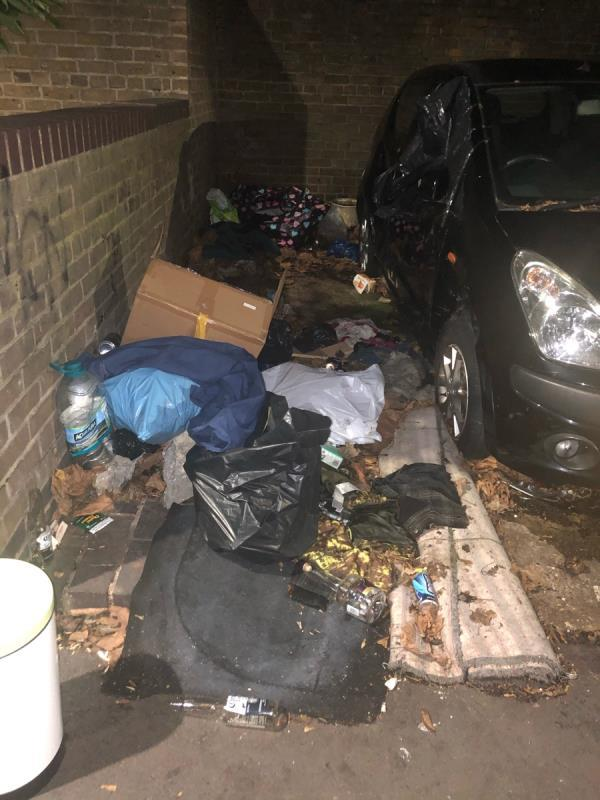 Dumped rubbish -26 Elderberry Way, London, E6 6AB
