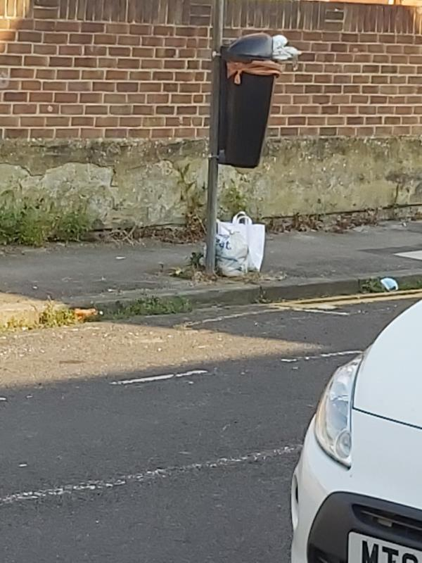 2 bags of rubbish discarded by full bin. -43 Valentia Road, Reading, RG30 1DH