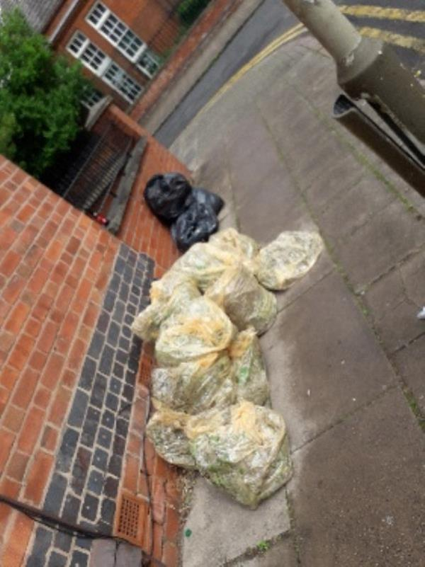 bags of rubbish dumped-1a Skipworth Street, Leicester, LE2 1GD