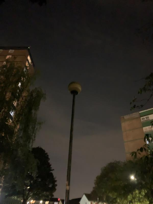 Park lights at priory park next to Priory Road not working. Dangerous at night time-Lyall House, 1 Priory Road, East Ham, E13 9FA