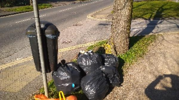 Flytipped bags no evidence taken -979 Oxford Road, Reading, RG31 6TN