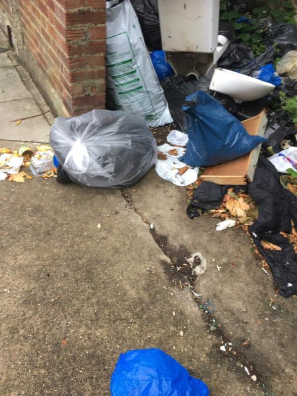 Fly tip needs removing asap-33a Woodhouse Grove, Manor Park, E12 6SR