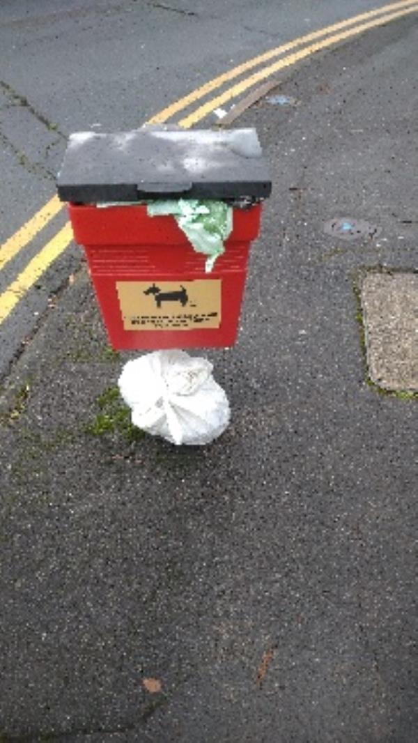 Flytipped household and dog n cat  poo no evidence taken -93 Ashburton Road, Reading, RG2 7PA