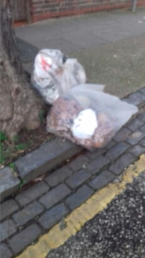 2 bags of wastes dumped outside block 22 to 28 Jenkins Road -24 Jenkins Road, London, E13 8NP