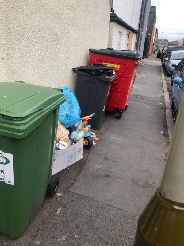 Dumping by bins-242 Green Lane Road, Leicester, LE5 4PA