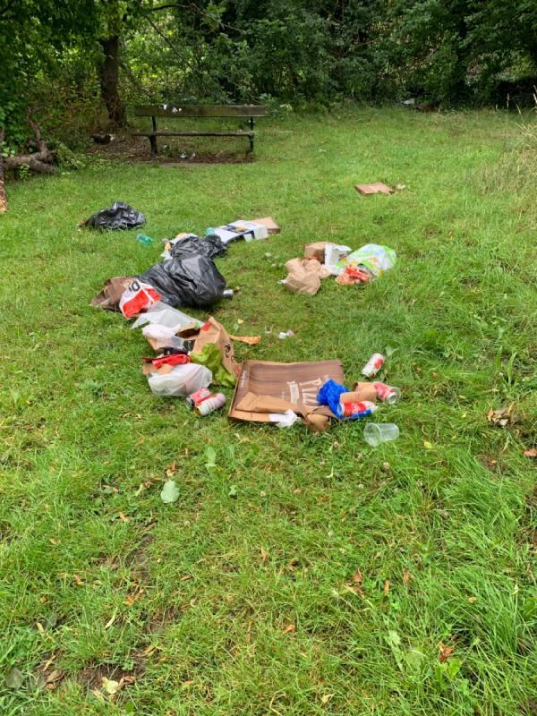 Rubbish dumped again in Palmer park-53 Palmer Park Avenue, Reading, RG6 1LF