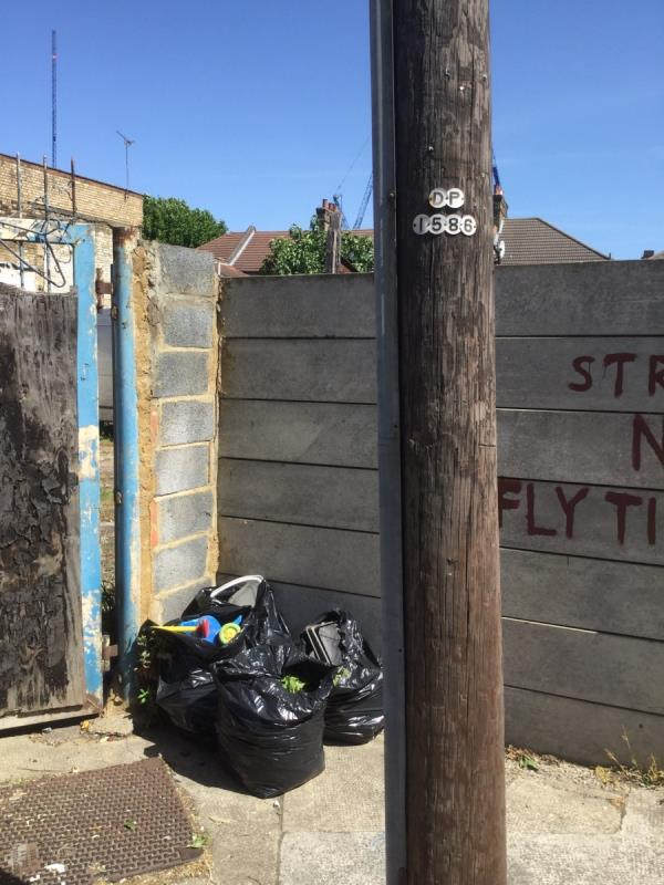 Garden waste and hard plastic behind telegraph pole dp 1586 image 1-1 Benson Avenue, London, E6 3EE