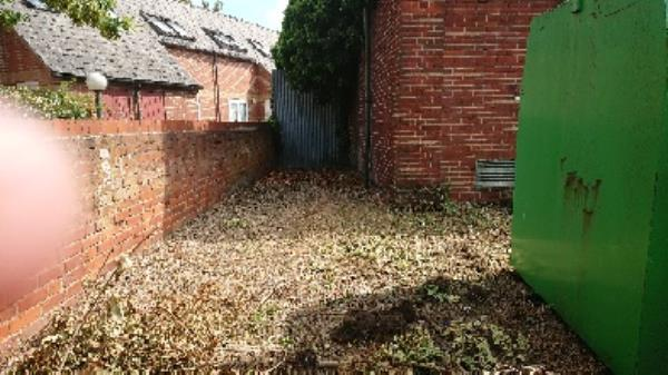 site cleared deep cleaned -2 Huntley Court Erleigh Road, Reading, RG1 5NW