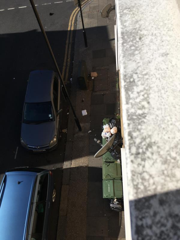 The bins that belong to Plashet Grove that the Council insist are put outside our flats are again a rubbish dump with the smell and the fire risk to our homes and lives -2A/2D Waterloo Road, East Ham, E6 1AP