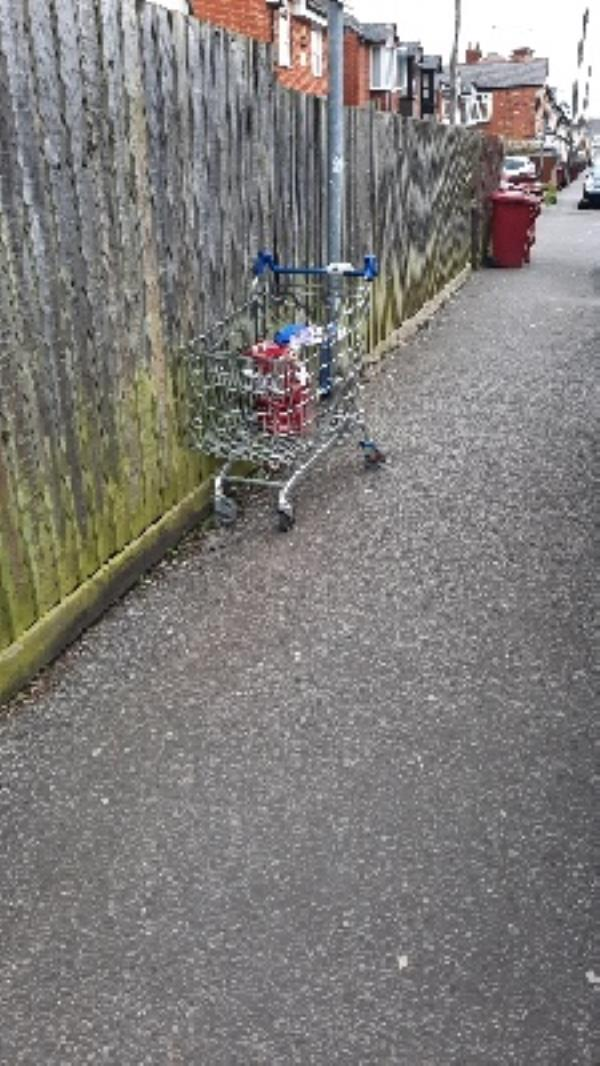 shopping trolley -11 Beresford Road, Reading, RG30 1DD
