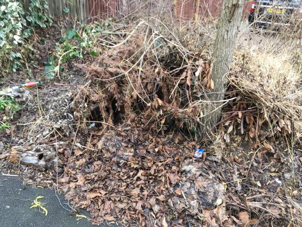 Dead wood, garden waste and other green rubbish are blocking Chetwood Walk. There is large number of trimmed trees and bushes left to rot.   image 1-8 Moncrieff Close, London, E6 5TF
