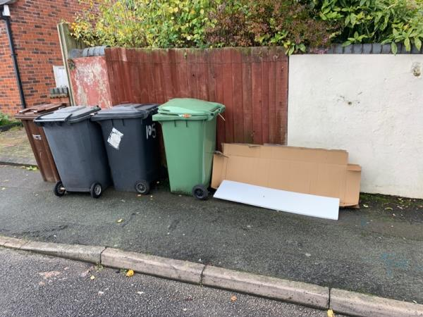 Items dump again by the two bins need the bin moved ASAP as they are the problem as well as the items dump plz move them this time around as nothing was done to the bins last time -21a Cardiff Street, Wolverhampton, WV3 0EZ