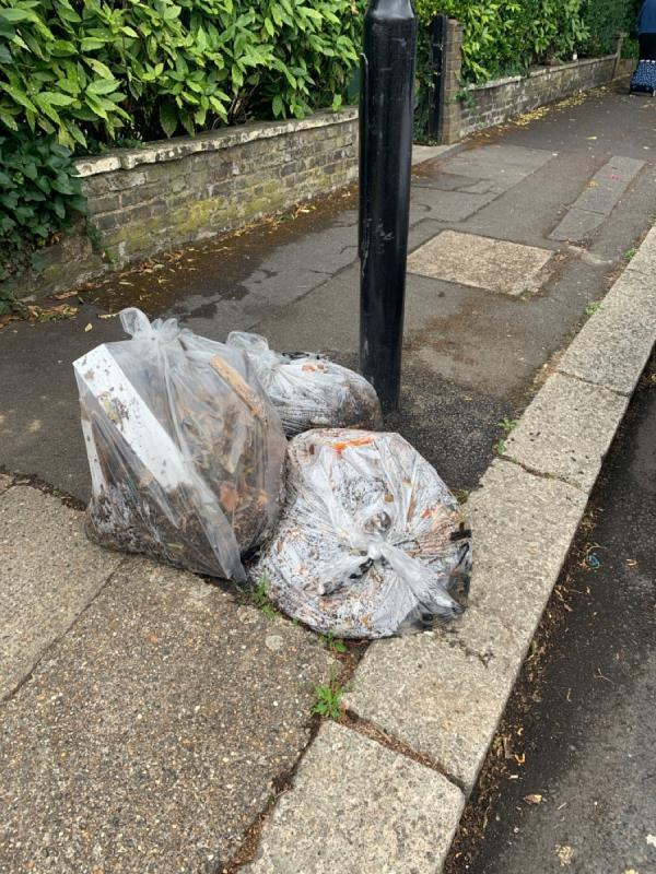 Please collect your bags which has been left along the side of the road on Windsor Road. This happens every week. The road sleeper comes on a Friday it's not collected until the following week. Get your act together.-26a Windsor Road, London, E7 0QX