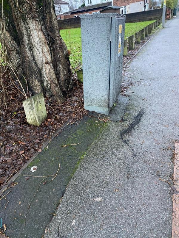 Tree roots lifting pavement and electrical box for traffic lighting, trip hazard -175 Willenhall Road, Wolverhampton, WV1 2DN