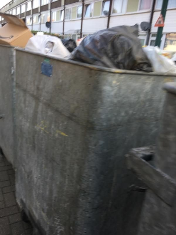 Bin over flowing -114 Snowshill Road, Manor Park, E12 6BB