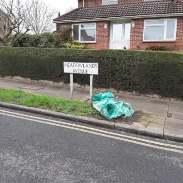 SEESL from NP Zone2 EBC 14th Feb 12.20pm please could you remove the builders bags that has been left at the junction of Brodrick Road and Meadowlands Ave.  thank you-328 Brodrick Road, Eastbourne, BN22 0DL