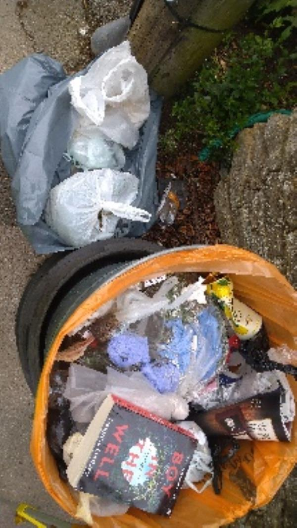 Bin full of household waste and garden waste no evidence taken -25 Armour Road, Reading, RG31 6EZ