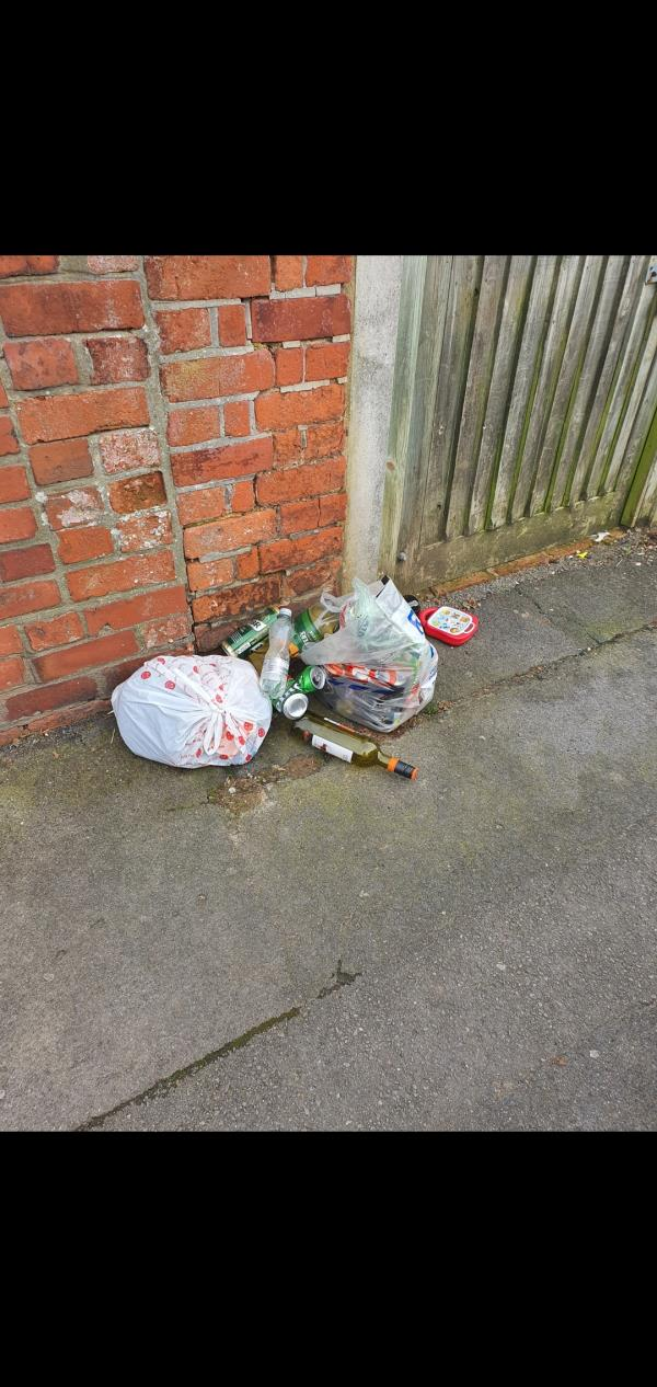 Dumped rubbish bags outside 103 Belmont Road.  Including glass bottles-101a Belmont Road, Reading, RG30 2UY