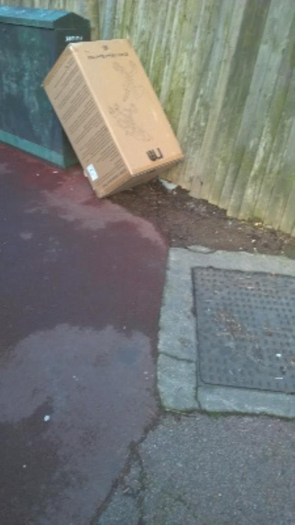 cardboard box -78 Colchester Avenue, London, E12 5