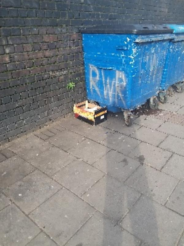 thr grove 198 fly tipping needs to clear out stratford original ambassador AR-1c Manbey Park Road, London, E15 1