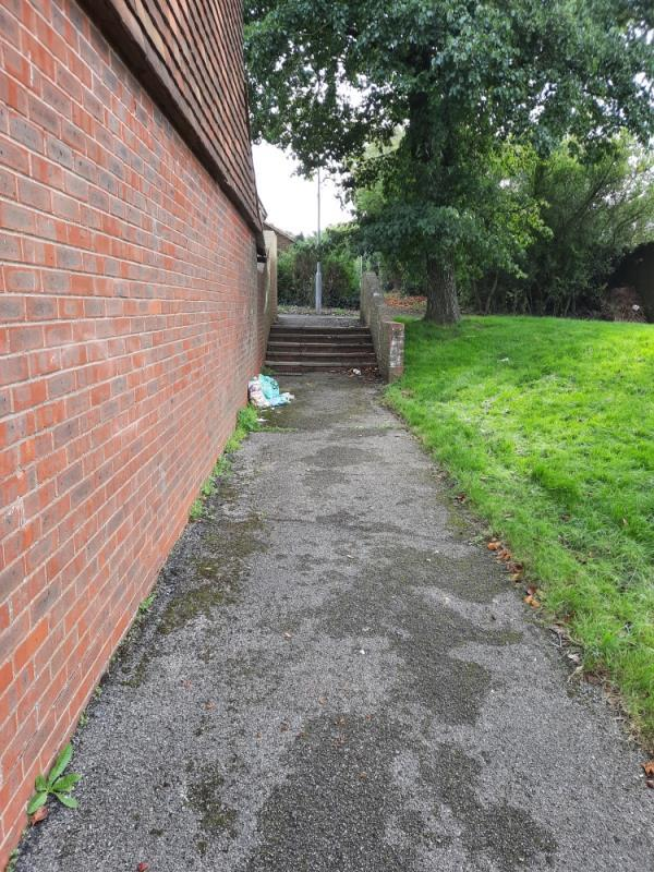 Please remove 2 small bags of litter from adopted pathway beside 5 Ranworth Close. No evidence found-16 Wroxham Road, Eastbourne, BN23 8DN