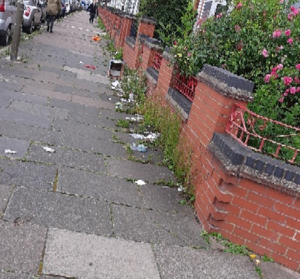 Weeds on pavement & accumulated rubbish on Turner Road/Hallaton Rd corner.-74 Turner Road, Leicester, LE5 0QA