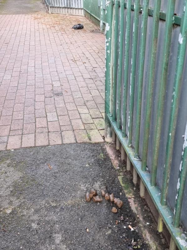 Dog fouling in two places in alleyway side of school-283 Beaconsfield Road, London, UB1 1DD