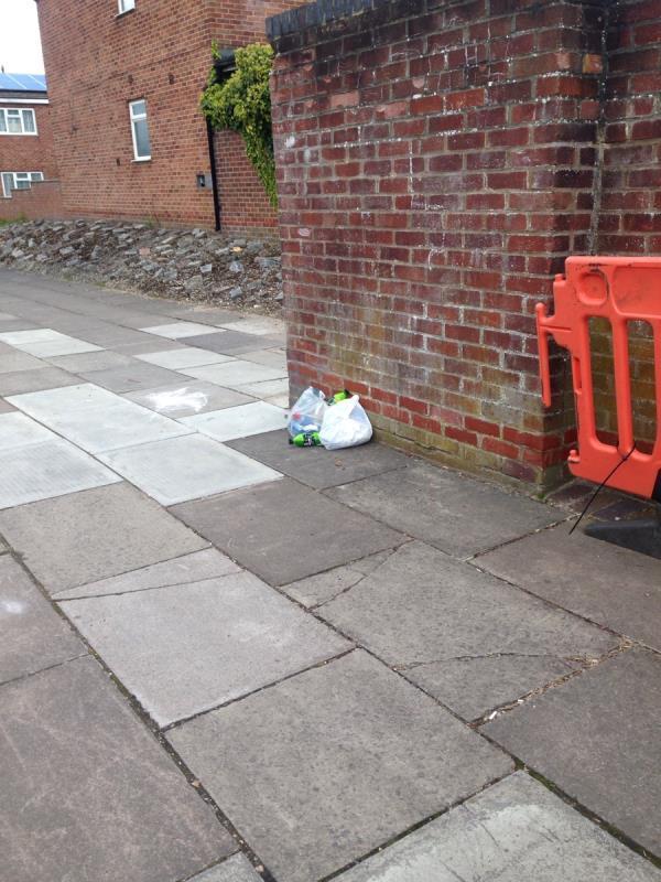 Rubbish on Elizabeth Walk, sort of by Blyth Walk. -35 Elizabeth Walk, Reading, RG2 0AW