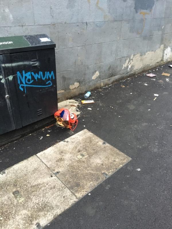 Rubbish -53 Perth Road, Plaistow, E13 9DS