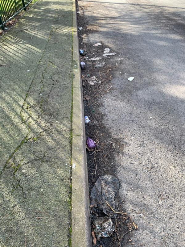 Litter pick required along gulleys and pavement on Pool St near to Strengthening Families Hub-The Cottage Pool Street, Wolverhampton, WV2 4NF