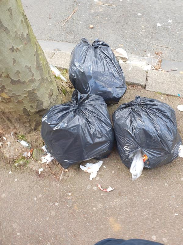 Black bags dumped outside number 19 by base of tree and two lumps of concrete one in the road by kerb another in middle of the pavement. Reported twice and apparently collected but still there.-17 Hollington Road, East Ham, E6 3QN