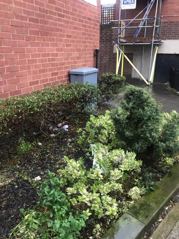Clearance of loads of litter needed. Litter picking in plant area needed. -School House Detmold Road, London, E5 9NL
