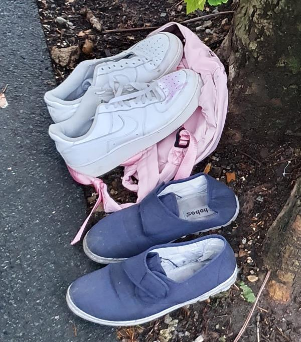 Dumped at base of tree outside at 8.30pm on 17th May by two women, both with dark hair, one wearing green trousers, they then went into one of the houses-132 Lymington Avenue, London, N22 6JG