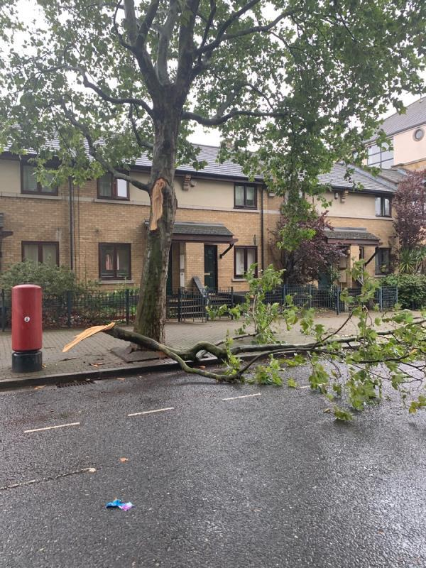 10 meter Branch from tree has snapped off image 1-1 Britannia Gate, London, E16 1SA