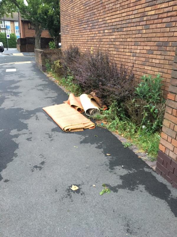 Rubbish -17 Northern Road, Plaistow, E13 9AE
