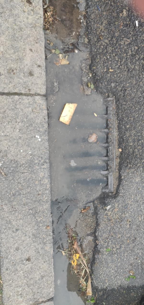 blocked drain-32 Rostrevor Avenue, South Tottenham, N15 6LP