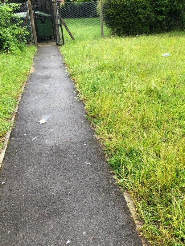 Urgent litter pick and glass pick from Jimmy green play park -The Happy Prospect, 50 Coronation Square, Reading RG30 3QN, UK