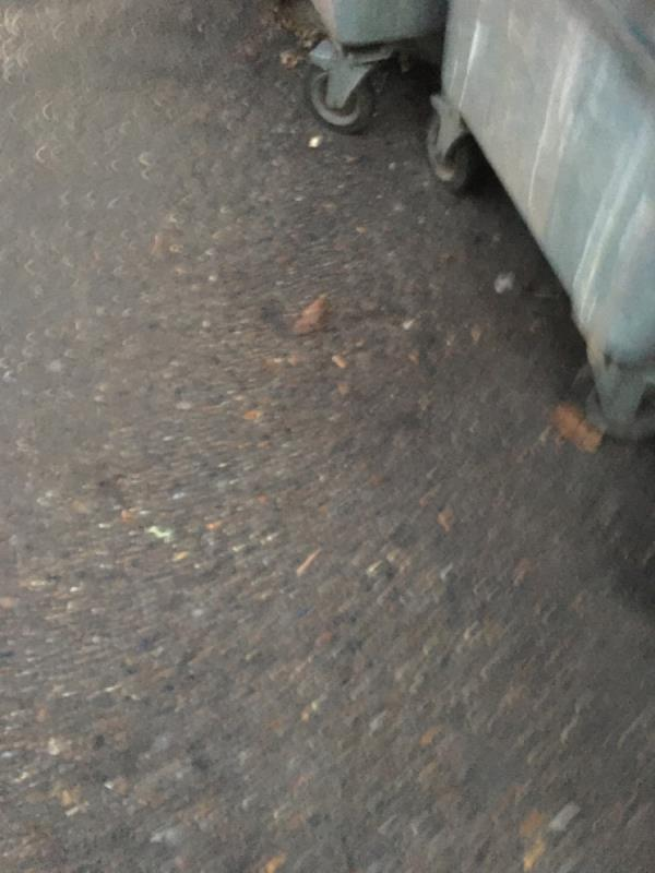 Bins are damaged and need replacing -228a Romford Road, London, E7 9HZ