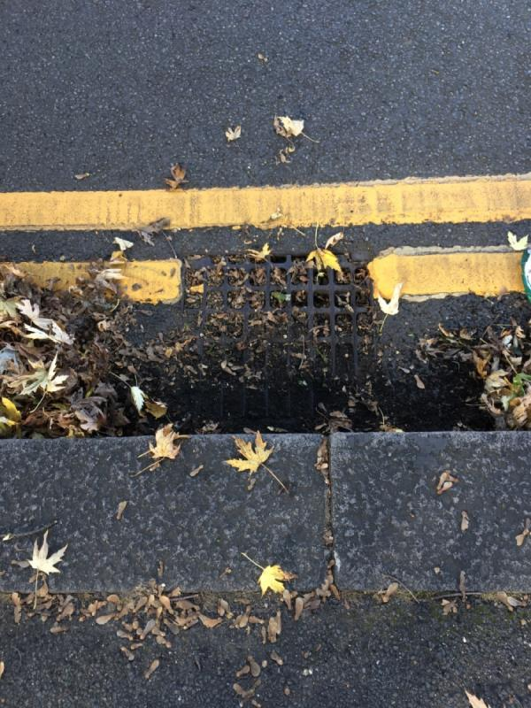 Gully grill blocked with leaves and soft detritus opp. 158 Church Rd N17-160 Church Rd, London N17 8AS, UK