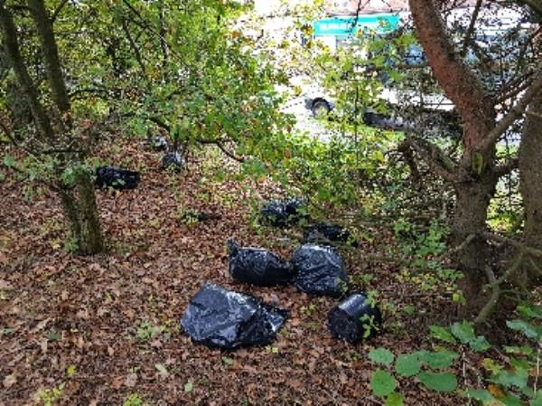 flytipping of drugs grow in woods both ends of child's ave on woodcross open space-122 Childs Avenue, Bilston, WV14 9XB