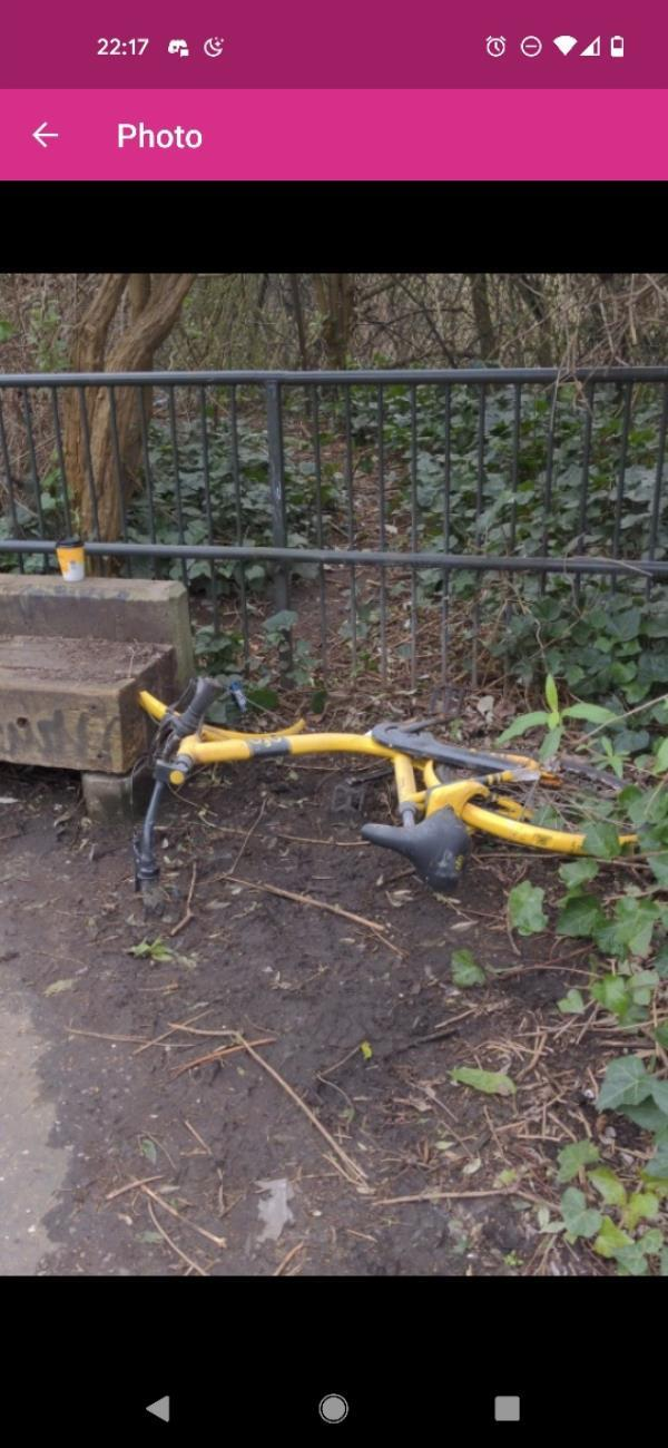 Abandoned ofo bicycle. Been there months. Reported 3 weeks ago. Still there. On the slope up to the Greenway-The Cottage, Dace Rd, London E3 2NW, UK