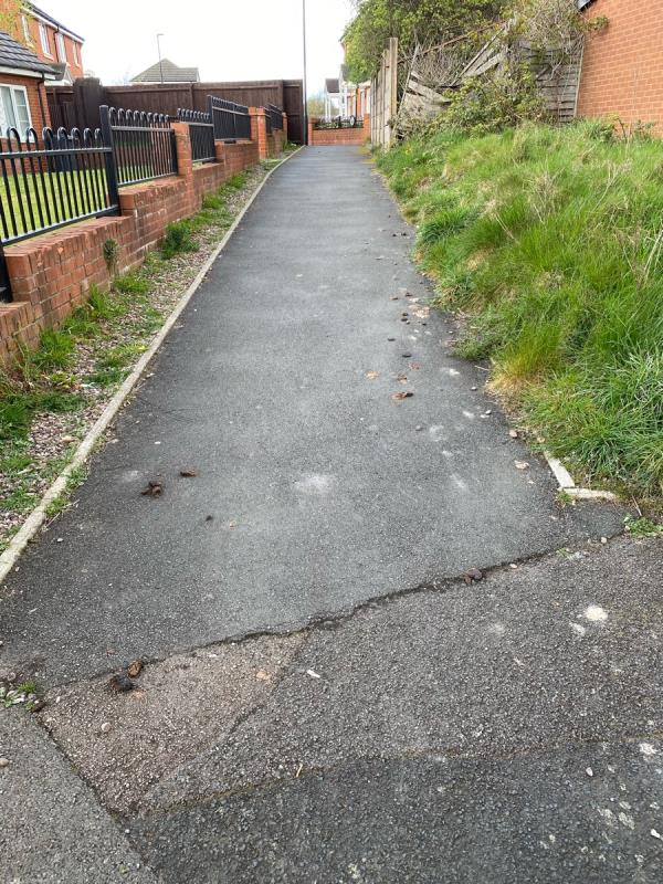 Between Selbourne Crescent and Mayfield Road, excessive amounts of dog Pooh -19 Selbourne Crescent, Wolverhampton, WV1 2EB