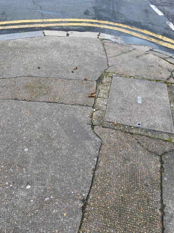 Dog fouling-1a Sutton Court Road, London, E13 9NN