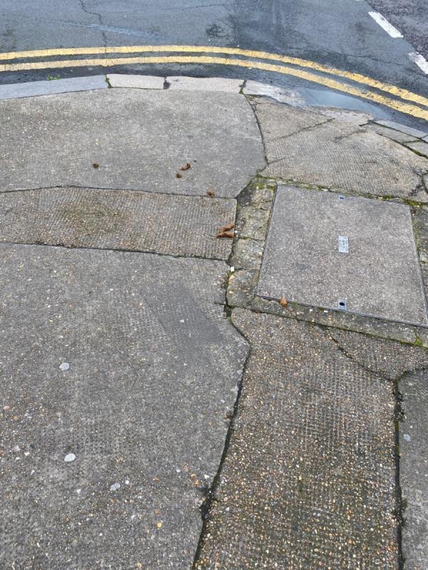 Dog fouling-1a Sutton Court Road, London, E13 9NN