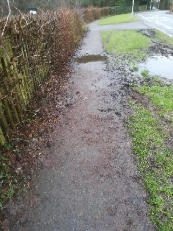 Customer reporting that the path at Linton Road opposite house number 54 is slippery due to a puddle and mud on the path from the damaged verge, I will arrange for the verge to be reinstated-54 Linton Road, Wolverhampton, WV4 4DR