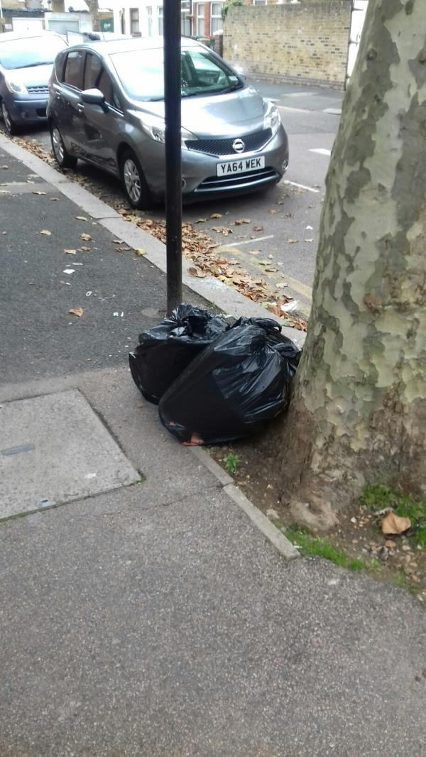3 bags of wastes dumped South Esk Road junction with Marlborough Road -63 South Esk Road, Upton Park, E7 8EZ